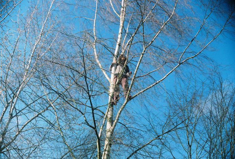 Alexej kann gut klettern... 2020, Foto Salomeja Keleraite